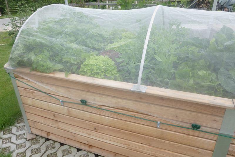 Hochbeet Aufsatz Schmal mit Gemüseschutznetz