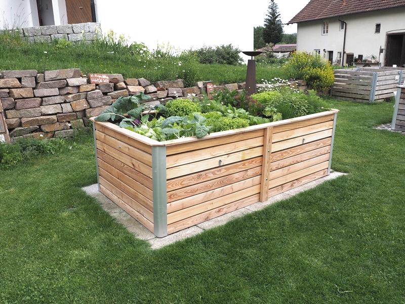 Hochbeet mit Gemüse bepflanzt